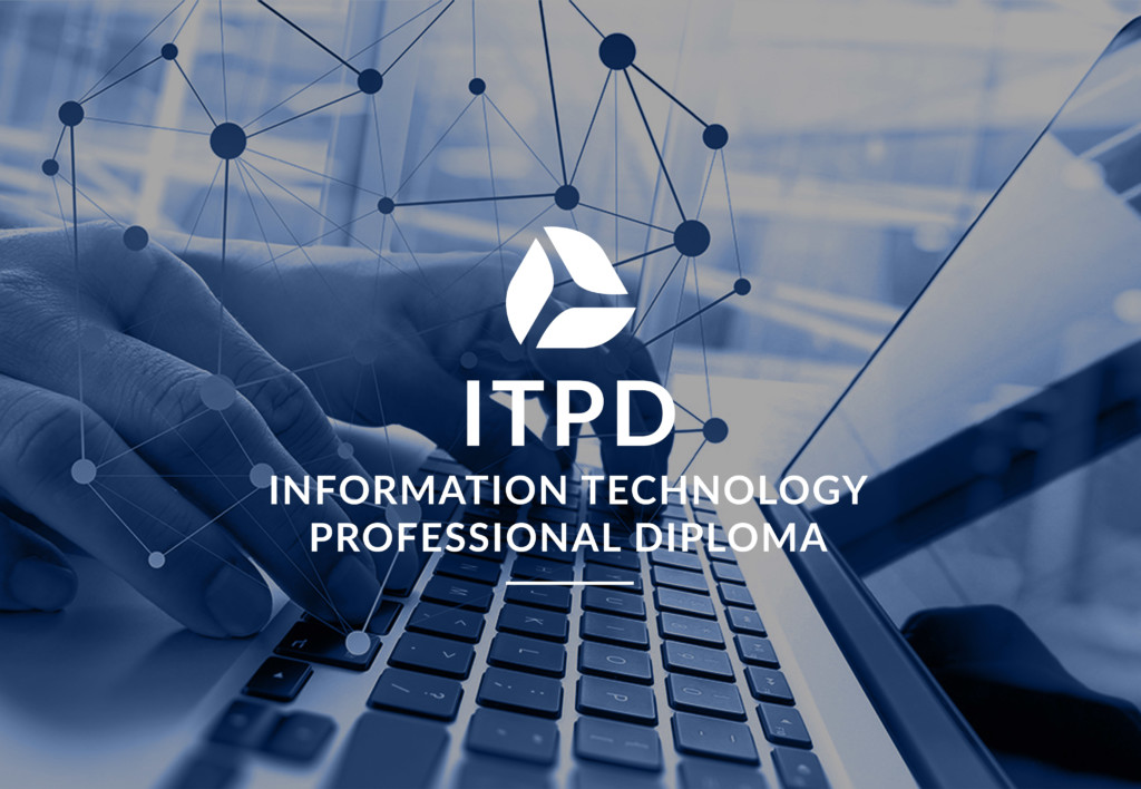 Information technology professional diploma